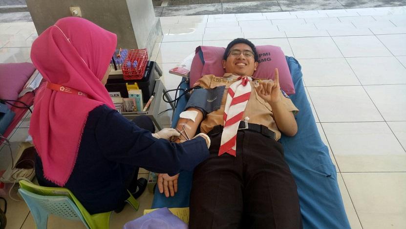 donor darah sehat